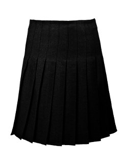 Stitched Down Pleated Skirt in Black